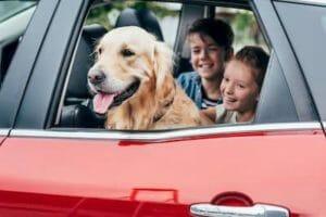 Auto Insurance Ontario - Morison Insurance